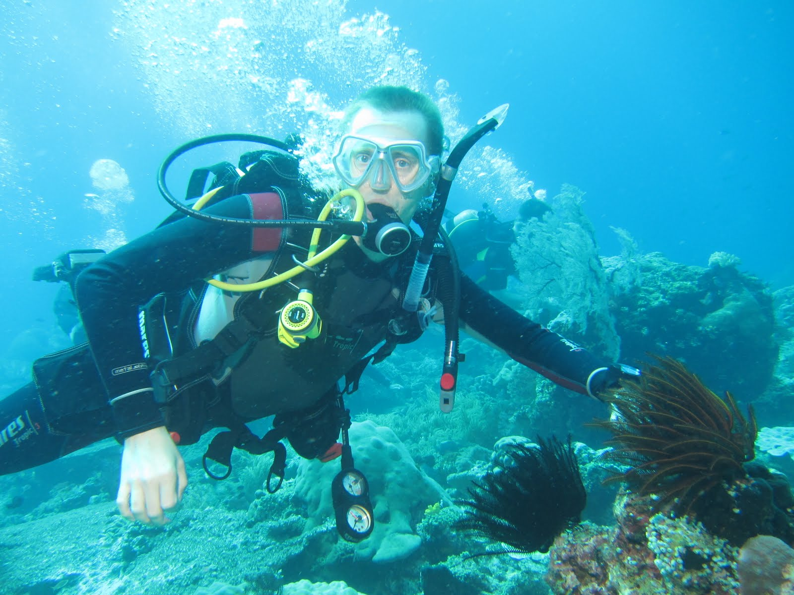 how to become an oceanographer in australia