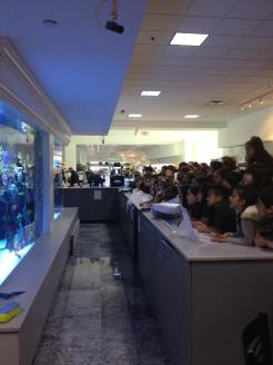 Abt's beautiful aquarium